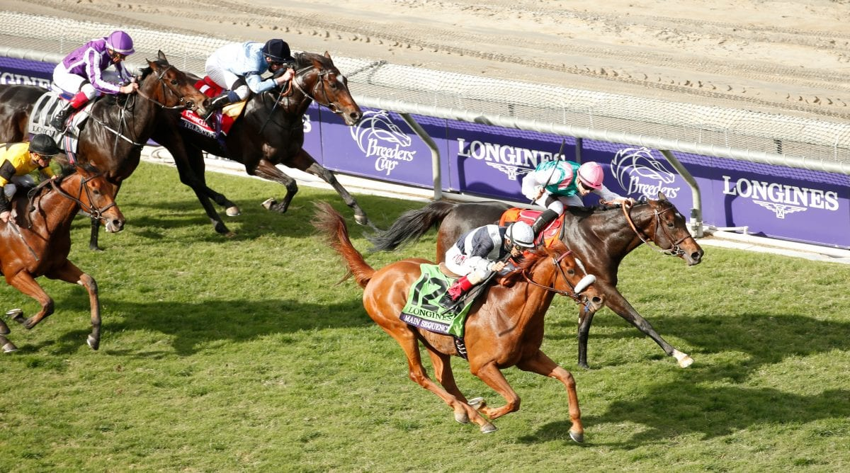 Mid-Atlantic Breeders' Cup wrap