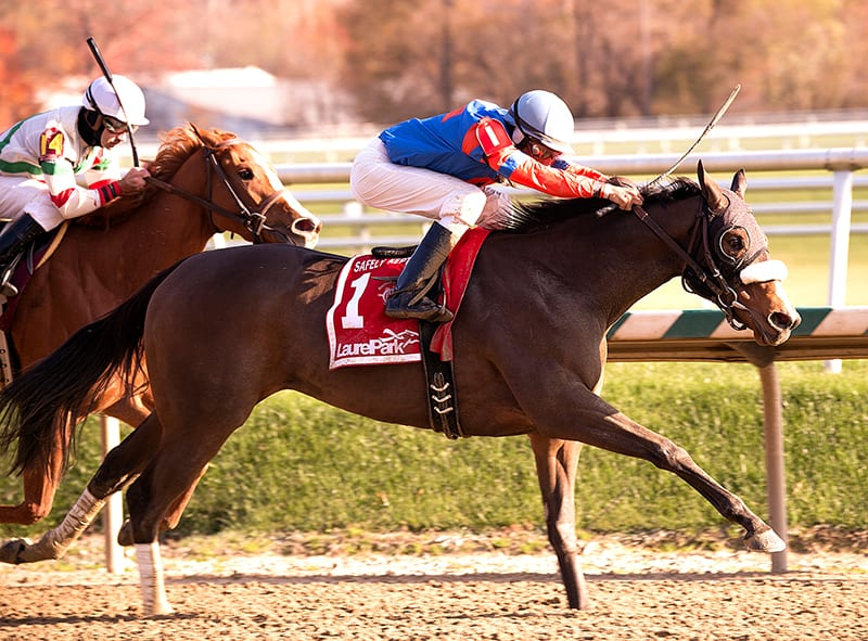 Who's In Town earns first stake win in Safely Kept Stakes