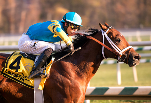 Zee Bros upsets the De Francis. Photo by Jim McCue, Maryland Jockey Club.