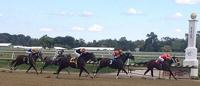 King Henry (#4) was a game second, to Bern Identity, in the Dave's Friend at Laurel in September. Photo by The Racing Biz.