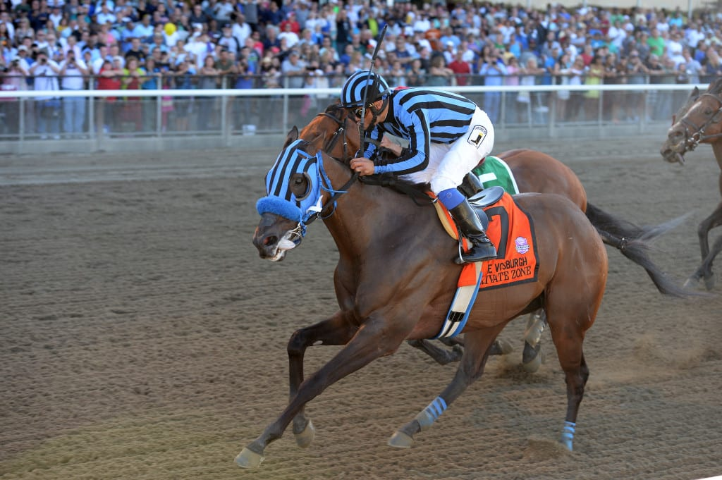 Private Zone wins the Vosburgh Stakes at Belmont Park. Photo by Chelsea Durand/NYRA.