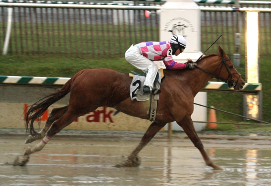 Eighttofasttocatch to be feted at Laurel Park