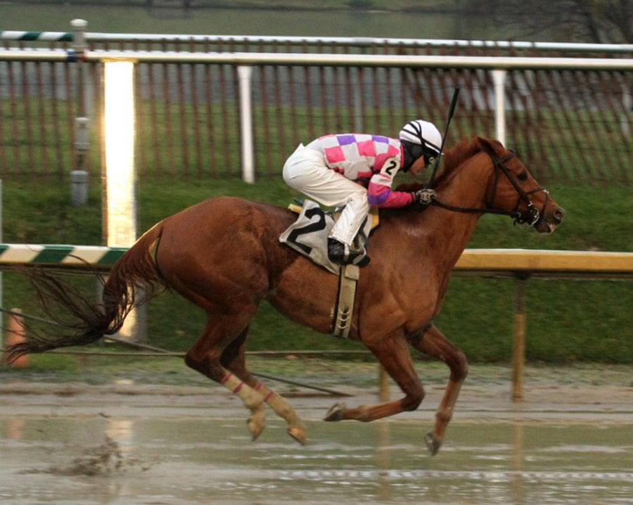 Maryland Million to take place October 17