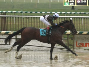 Victor Carrasco and Golden Years were much the best in the Marylander Stakes. Photo by Laurie Asseo.
