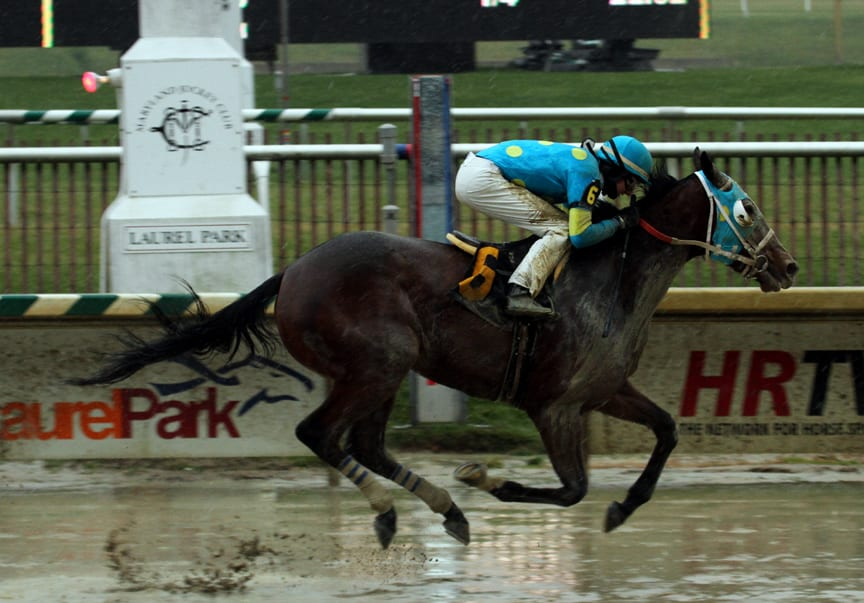 Laurel Park stakes slated for Thursday