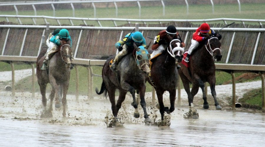 Three Maryland trainers hit with stanozolol suspensions