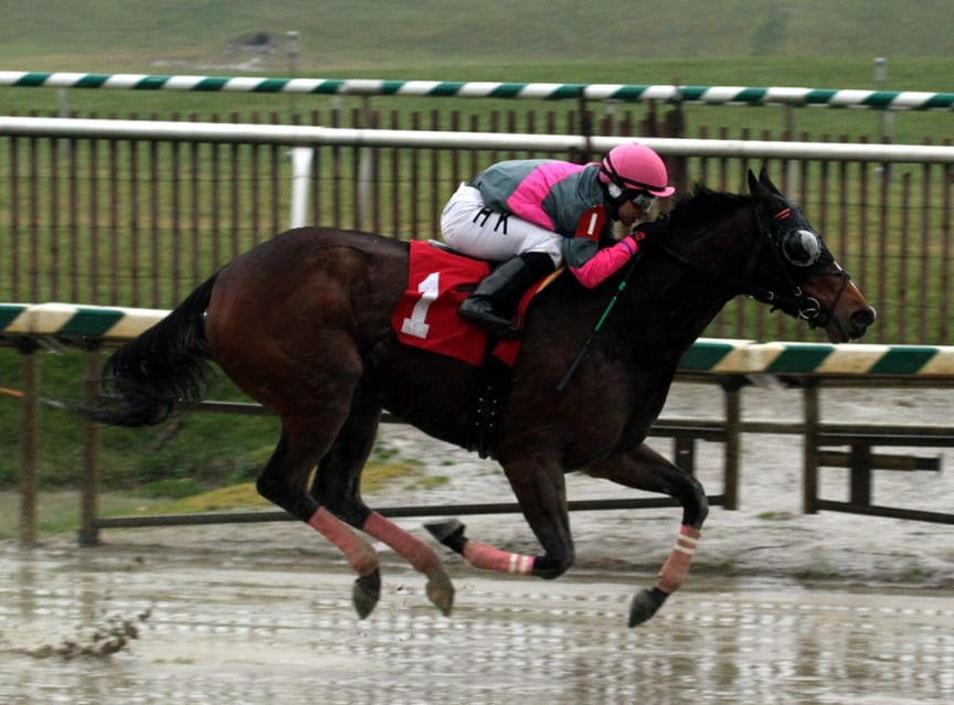 Lady Sabelia was much the best in winning the Willa on the Move Stakes impressively. Photo by Laurie Asseo.