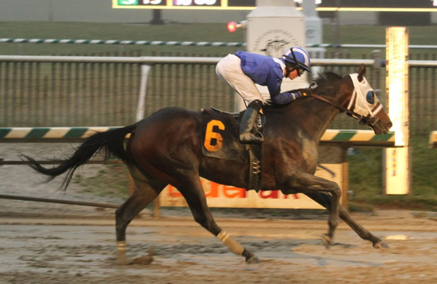 Elnaawi and Sheldon Russell run to victory in the Native Dancer Stakes. Photo by Laurie Asseo.
