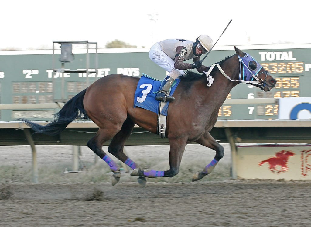 Rienzi sets the Parx Racing one-mile track record. Photo by Equiphoto.