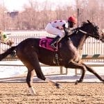 Questions abound in Campbell, Md. Racing Media Stakes