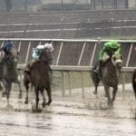 Organization of Racing Investigators to hold training conference