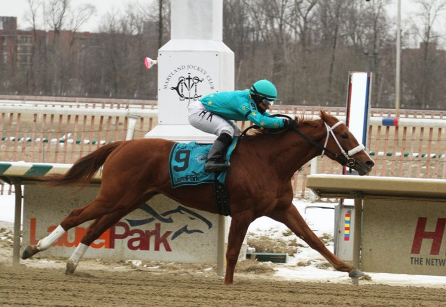 Breeders' Cup runners headline Penn Oaks