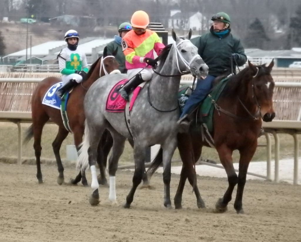 The cold weather makes life harder on the outriders, and their ponies. Photo by The Racing Biz.