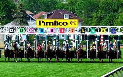 Pimlico: Bill would study the study