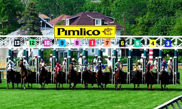 Pimlico meet to be broadcast in HD