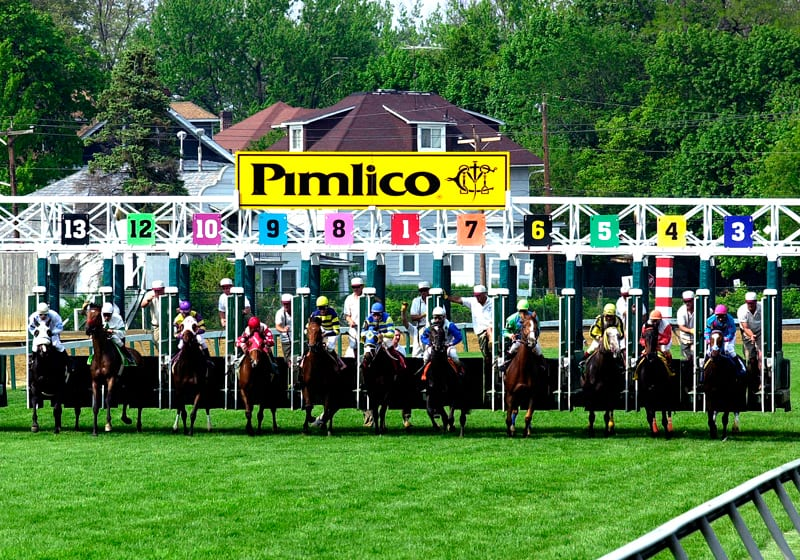 Nick's Picks for Preakness weekend