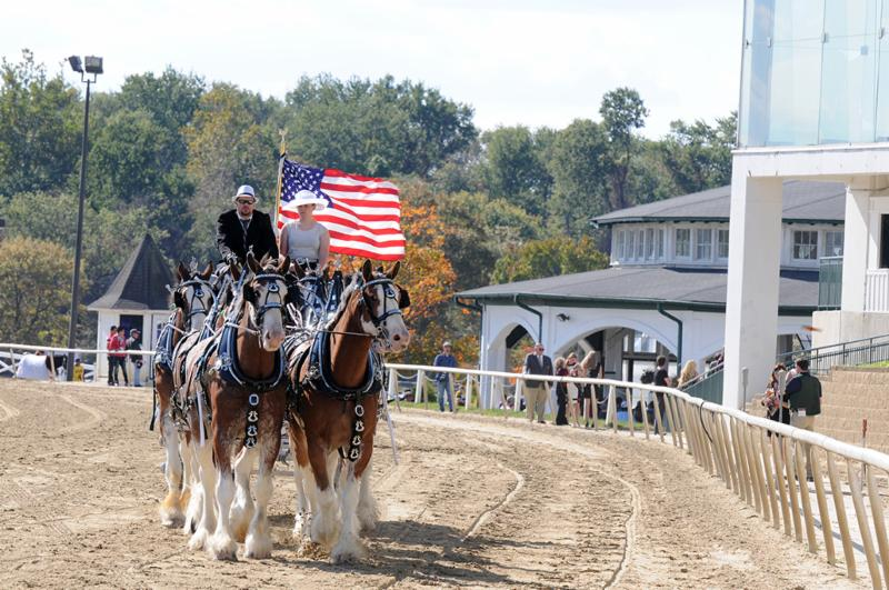 Maryland Million tabs official Clydesdales