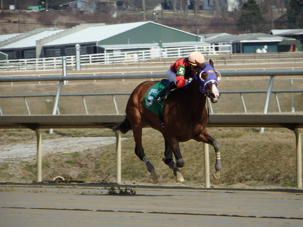 Eddy Gourmet and Sheldon Russell cruised to victory in the Conniver for Maryland-bred fillies and mares today. Photo by The Racing Biz.