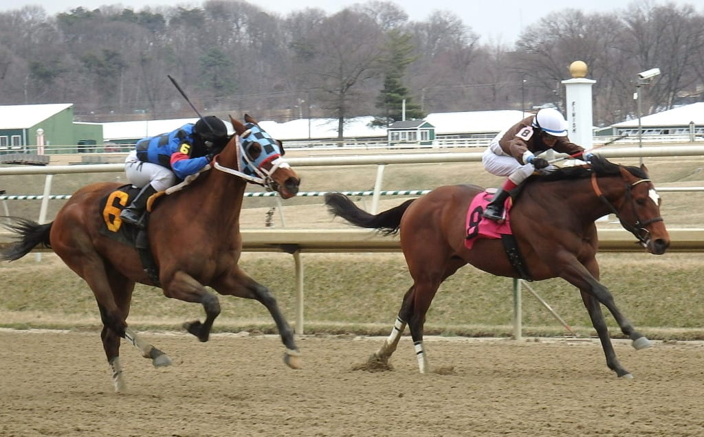 Noteworthy Peach ran down Top of Mind to win the seventh, paying $81 to win. Photo by The Racing Biz.