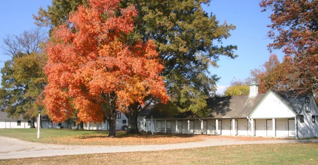 Barns at The Meadow. Photo courtesy of The Meadow.