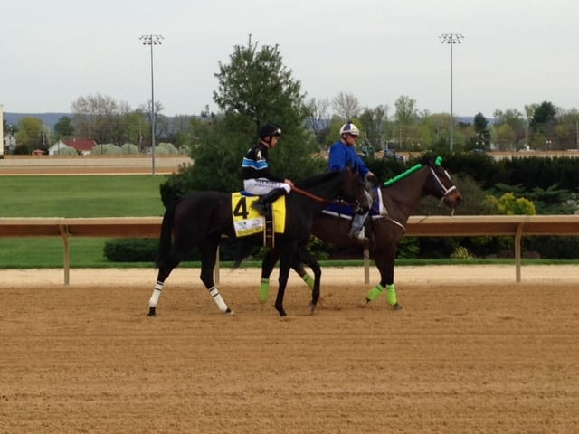 A hip fracture for Shared Belief