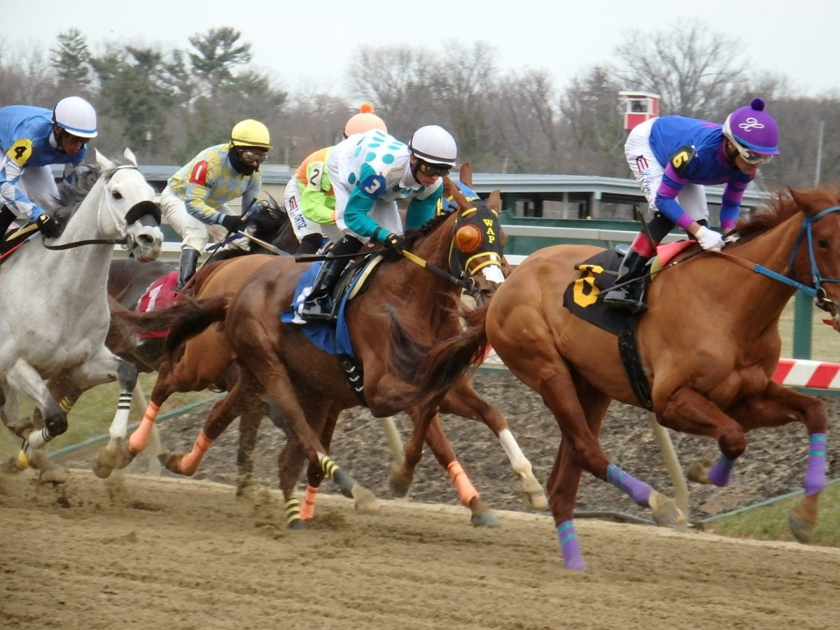 Delaware Owners' Day leaderboard and stakes live