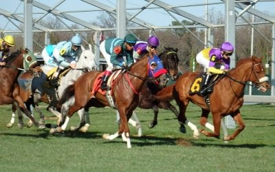 "In Maryland, jockey concussion protocols a ""fantastic"" step"