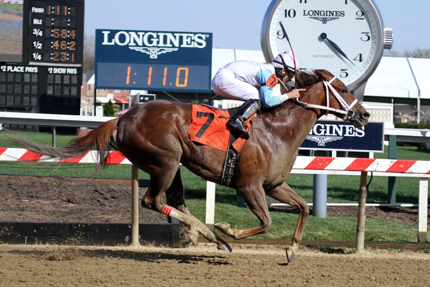 Galiana was much the best in today's Primonetta Stakes at PImlico. Photo by Laurie Asseo.