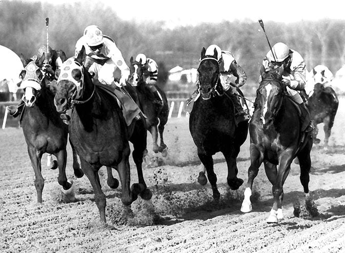 """""""Blue collar millionaire"""" Little Bold John earned more than $2.6 million. Photo courtesy of Maryland Thoroughbred Hall of Fame."""