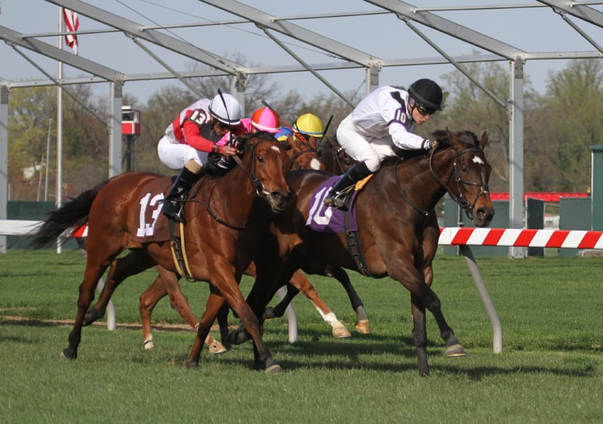 Nellie Cashman upset the Dahlia Stakes today at PImlico. Photo by Laurie Asseo.