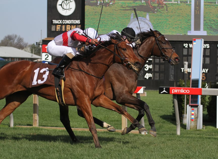 Nellie Cashman (inside) holds off Run of the River to win the Dahlia. Photo by Laurie Asseo.