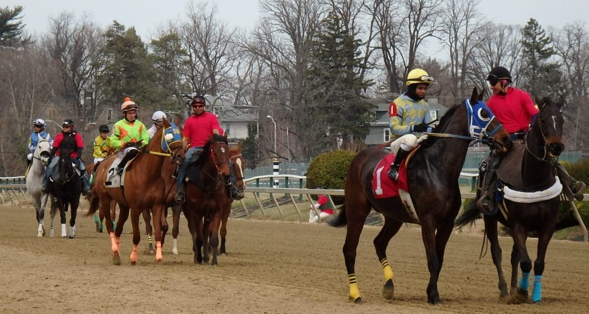 The Racing Biz story among eight Bergstein finalists