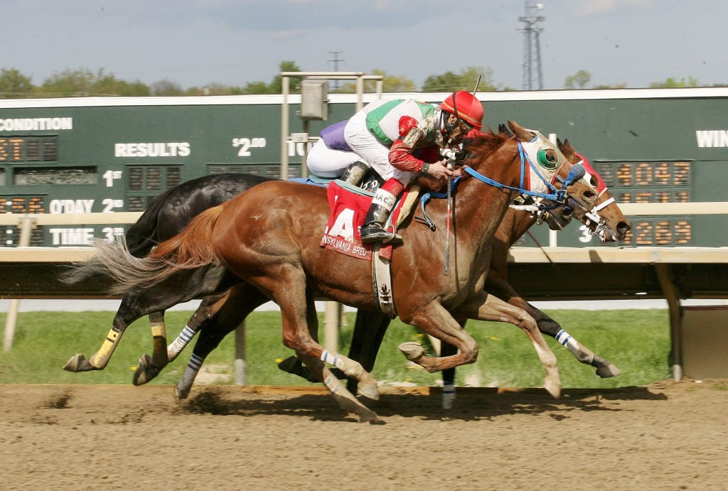 A Fleet Attitude was along in time to win the Lyman Handicap. Photo by Barbara Weidl / Equi-Photo.