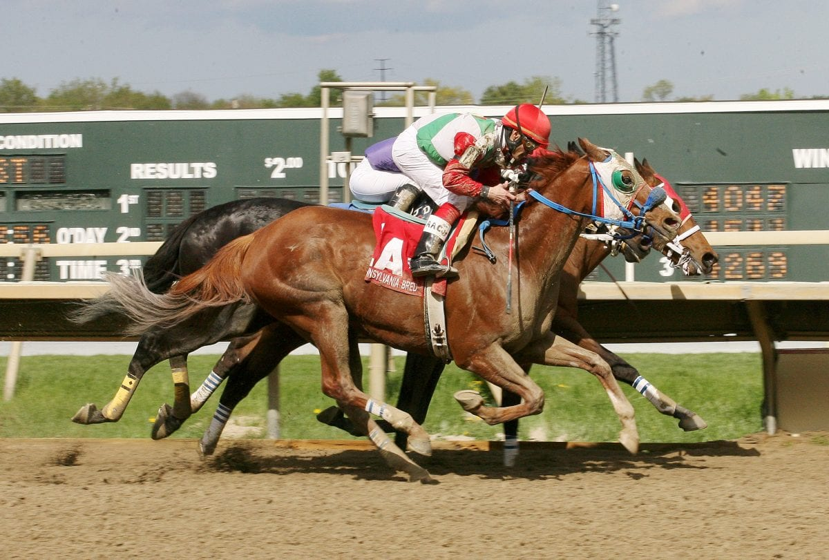 Parx Racing stakes wrap