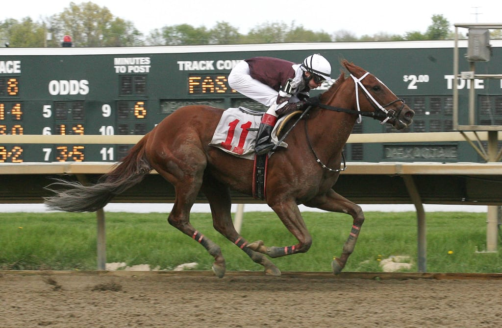 Danzatrice and Trevor McCarthy impressed in a flashy score in the Parx Oaks. Photo by Barbara Weidl/ Equi-Photo