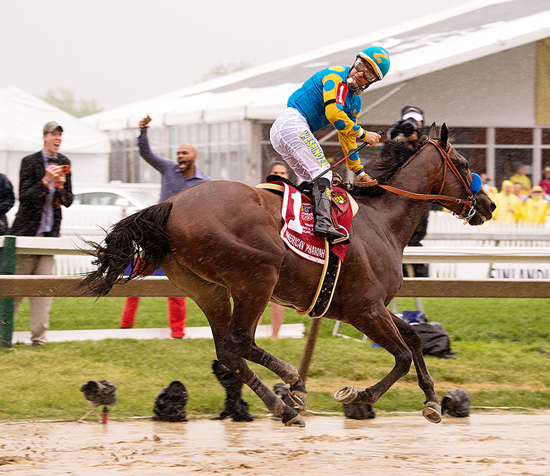 American Pharoah wins the 140th Preakness. Photo by the Maryland Jockey Club.