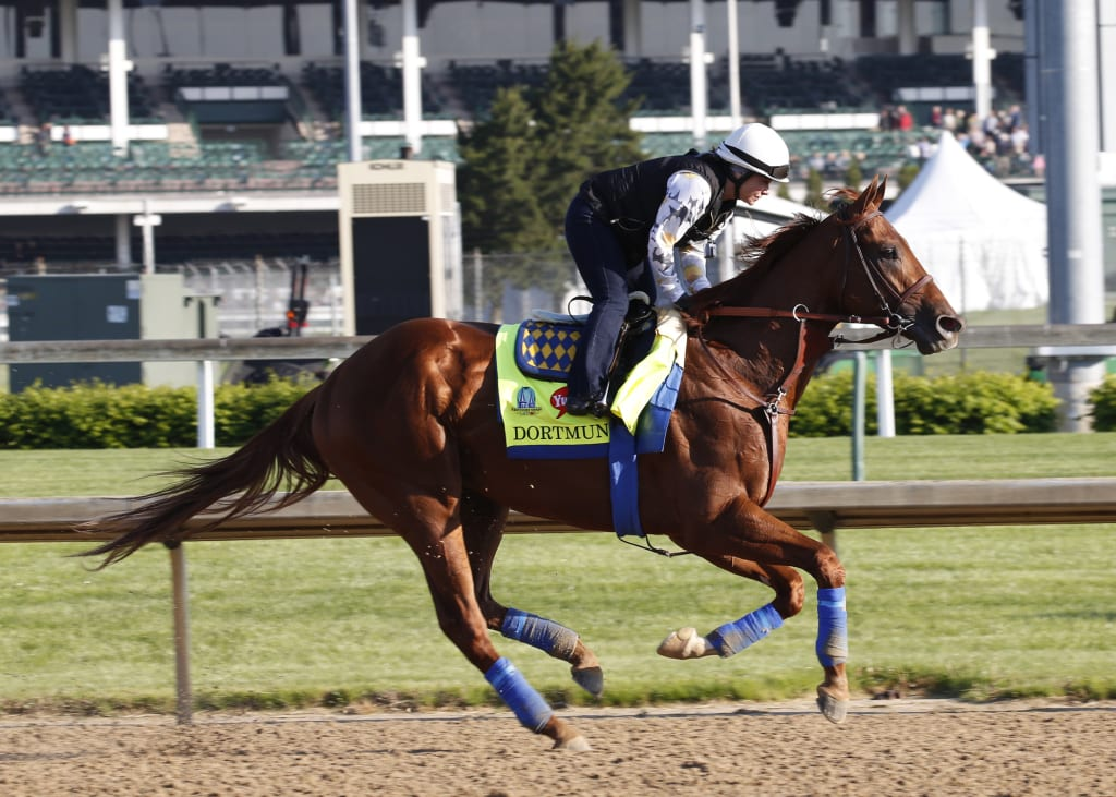 Dortmund on the track at Churchill Downs earlier this week. Photo by Reed Palmer, Churchill Downs.