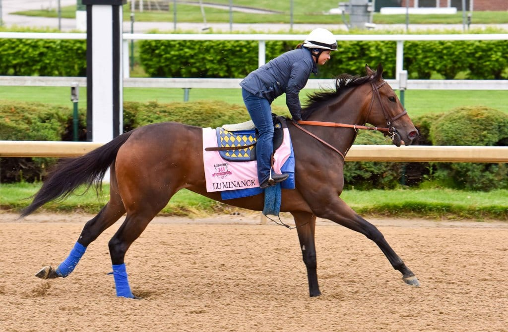 Luminance training at Churchill Downs. Photo by Mike Kane.