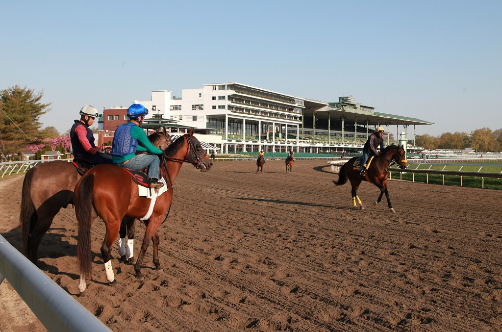 Horses train over Monmouth's main track. Photo By Bill Denver/EQUI-PHOTO.