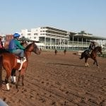 Monmouth charts different course on Lasix