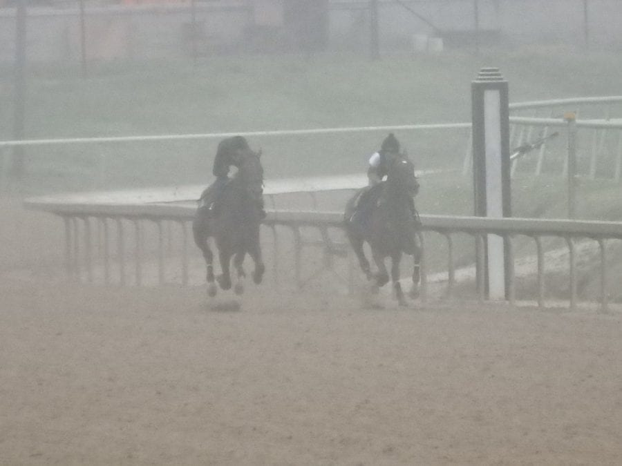 Preakness notes: Materiality out, Castellano in