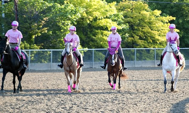Canter for the Cause attracts 229 to Old Hilltop