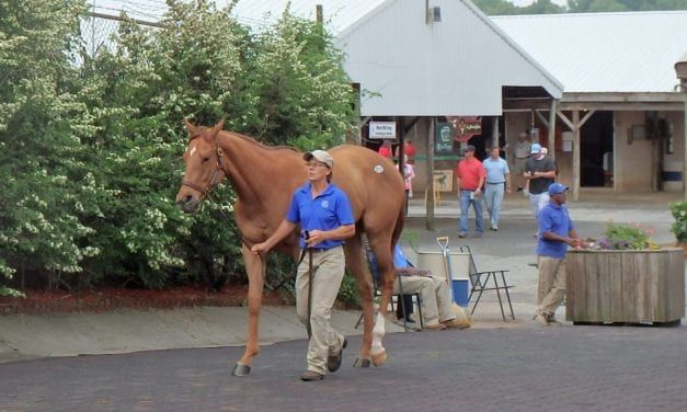 Fasig-Tipton: Day one sales nearly $3 million