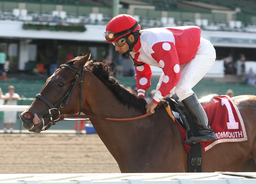 More Than A Party coasted to an easy win in the Open Mind Handicap at Monmouth Park.  Photo By Bill Denver/EQUI-PHOTO.