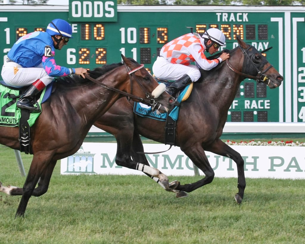 Saucy Don took the Dan Horn for NJ-breds Sunday at Monmouth Park. Photo By Taylor Ejdys/EQUI-PHOTO