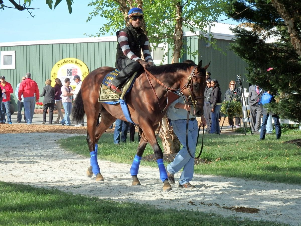 "American Pharoah provides NJ horsemen ""shot in the arm"""