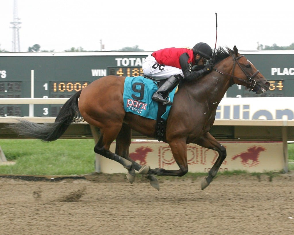 A.P. Indian won the Donald LeVine Memorial at Parx Racing on Saturday.  Photo By Barb Weidl/EQUI-PHOTO