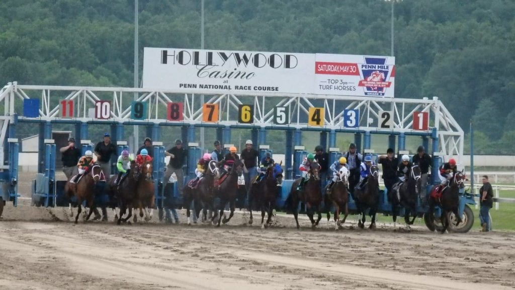 Live Horse Racing  Hollywood Casino at Penn National Race