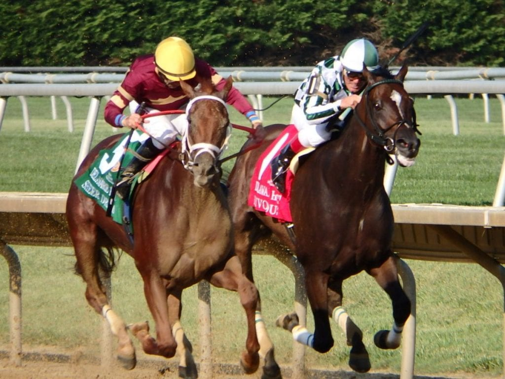 Sheer Drama (outside) outfought Frivolous to win the Delaware Handicap. Photo by The Racing Biz.