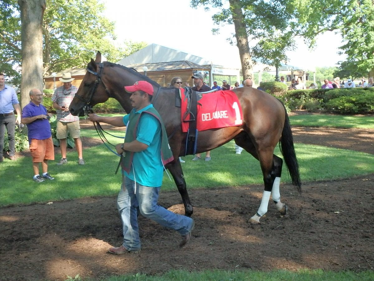 Upsets boost Delaware Park undercard stakes